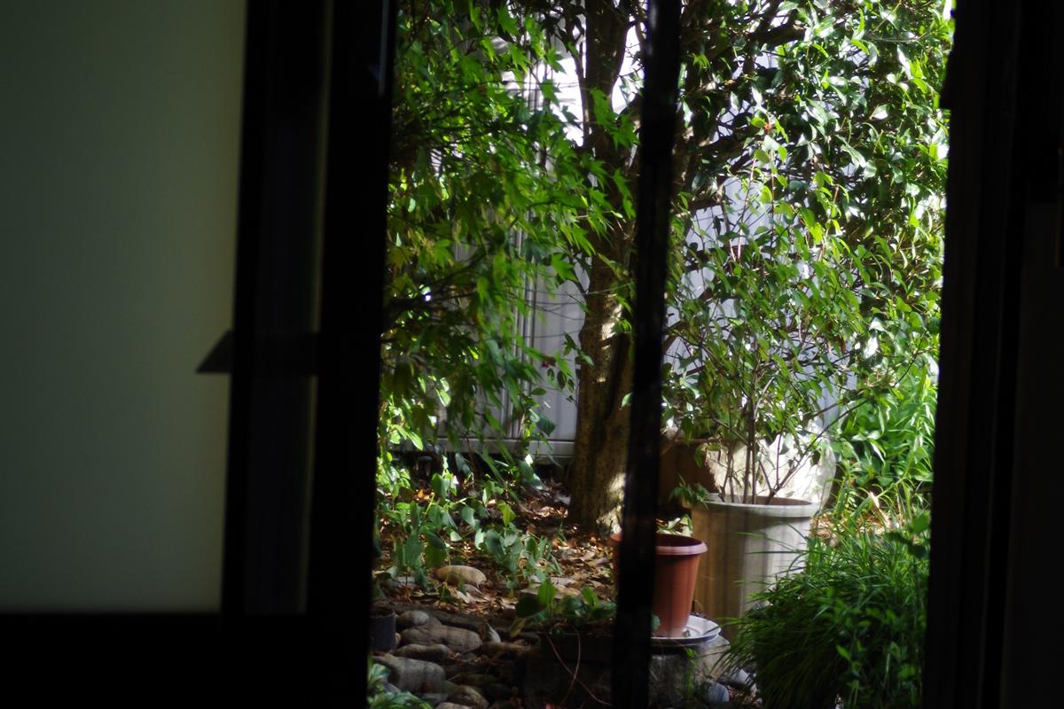 ゲストハウス蔵の美しい中庭。奥に蔵スペースもある